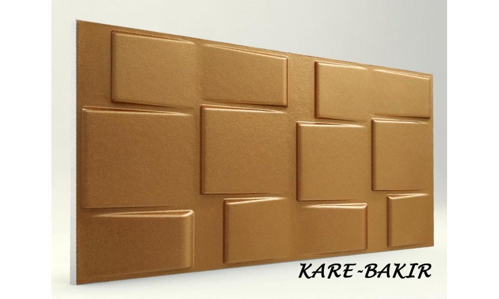 KARE PANEL (7)